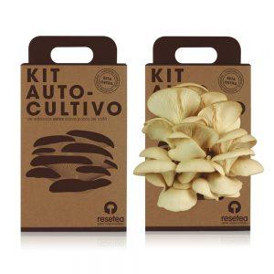 Kit d'auto culture de champignons huitre sur des marcs de café recyclés de Resetea