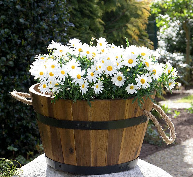 Bac à plantes, bac à fleurs en bois d'acacia, lot de 3 cuviers en bois