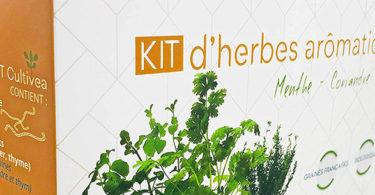 Kit Prêt à Pousser Complet d'Herbes Aromatiques
