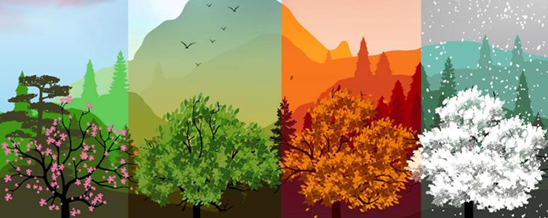 Les quatres saisons d'une jardinière