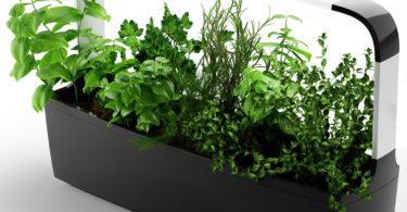 Tregren T12 Potager d'intérieur Connecté 12 plantes, Kit prêt à pousser