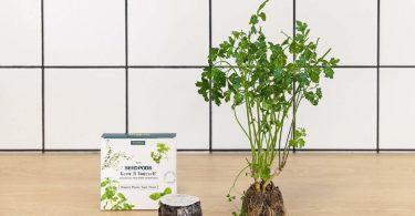 Tregren T12 Potager d'intérieur Connecté 12 plantes, Kit prêt à pousser et Jardinière Autonome pour herbes aromatiques