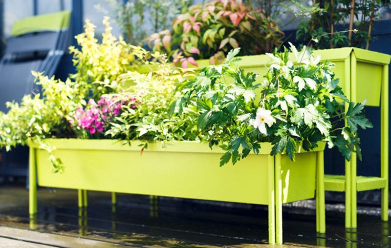 La jardinière une décoration tendance, mais non sans inconvénients