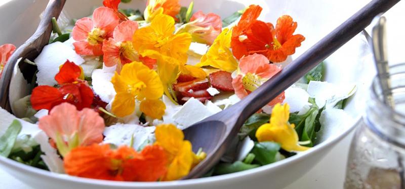 3 fleurs à mettre dans son assiette