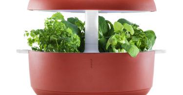 Plantui SG6-R Jardin d'intèrieur, Rouge
