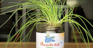 Blue Farmers Herbes aromatiques Cultivez votre Ciboulette à la Maison