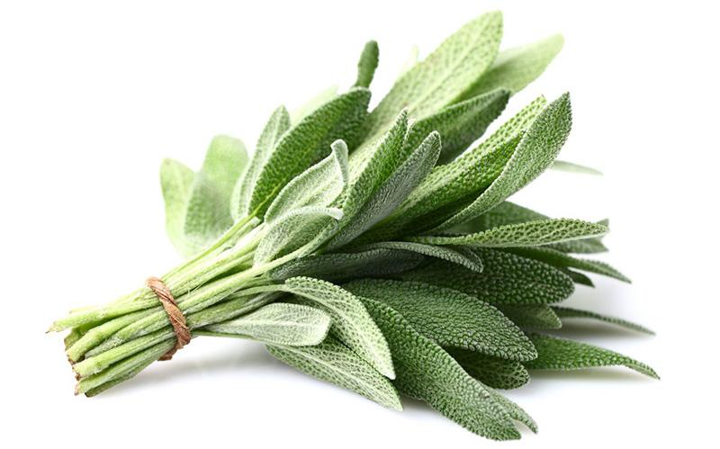 Les aromates anti-inflammatoires les plus efficaces