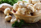 La culture de champignons chez soi