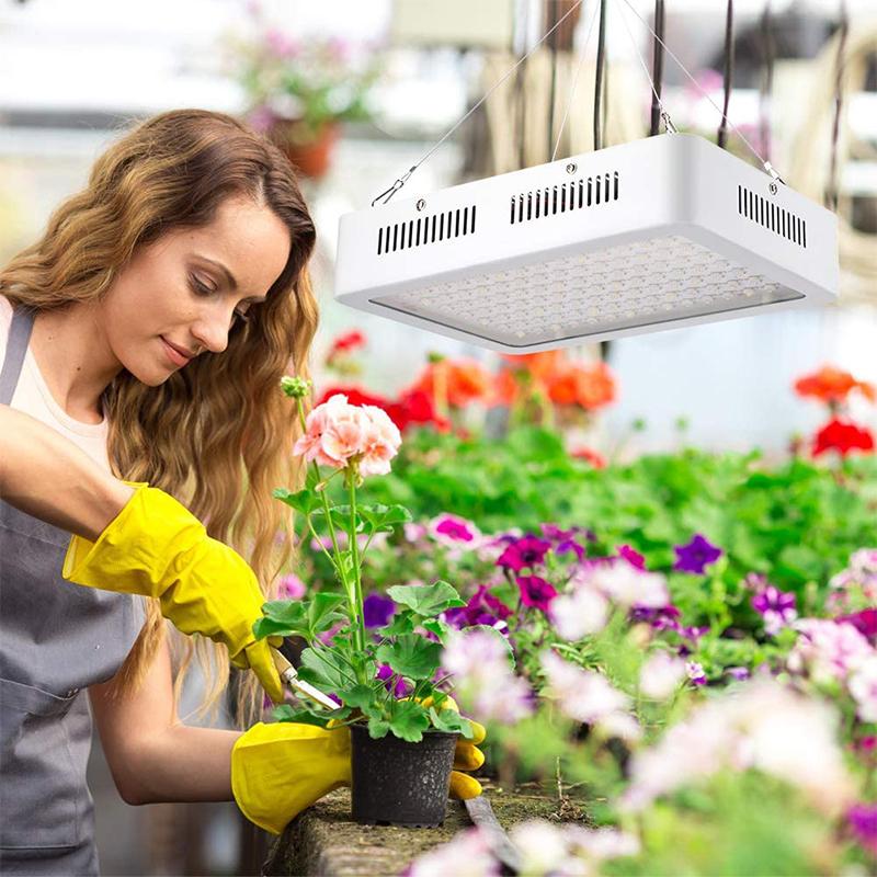 Avis - 1200W LED Horticole Lampe, Lampe de Croissance des Plantes à Spectre Complet à 120 LEDs avec Infrarouge UV, Idéale pour Plantes D'inté