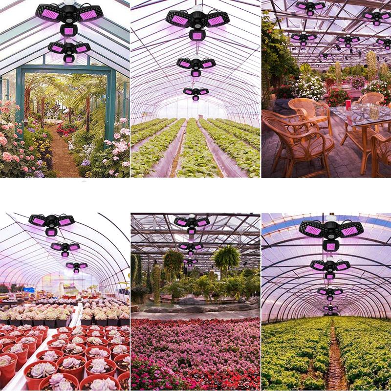 Avis - Lampe de Plante, 80W Lampe de Croissance Plante Led Horticole Lampe, 144 LED lumière Solaire à Spectre Complet avec Panneaux réglables pour Plantes