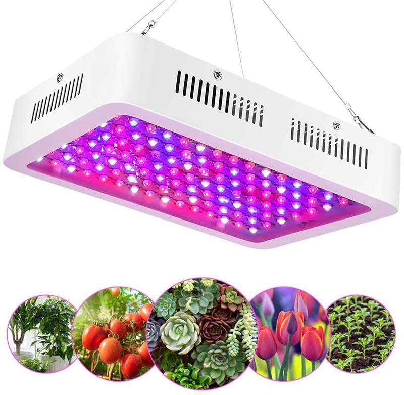 EECOO 1200W LED Horticole Lampe