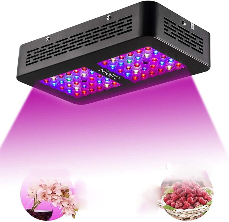 Test - Niello 300W LED Grow lightà Double lentille Optique, Spectre Complet pour la Croissance et la Floraison des Plantes en intérieur with