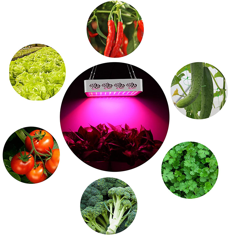 Test et Avis - Roleadro Led Horticole Floraison 1000w Led Culture,Lampe Croissance avec UV IR Lumière pour les Plantes d'intérieur Veg et Fle