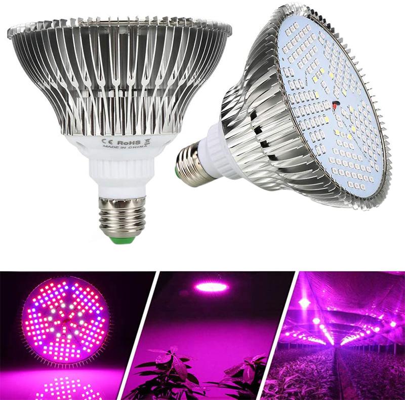Test et Avis sur la Lampe de Plante LED à Spectre Complet 100W E27 Ampoule Éclairage pour Plantes Lampe de Croissance