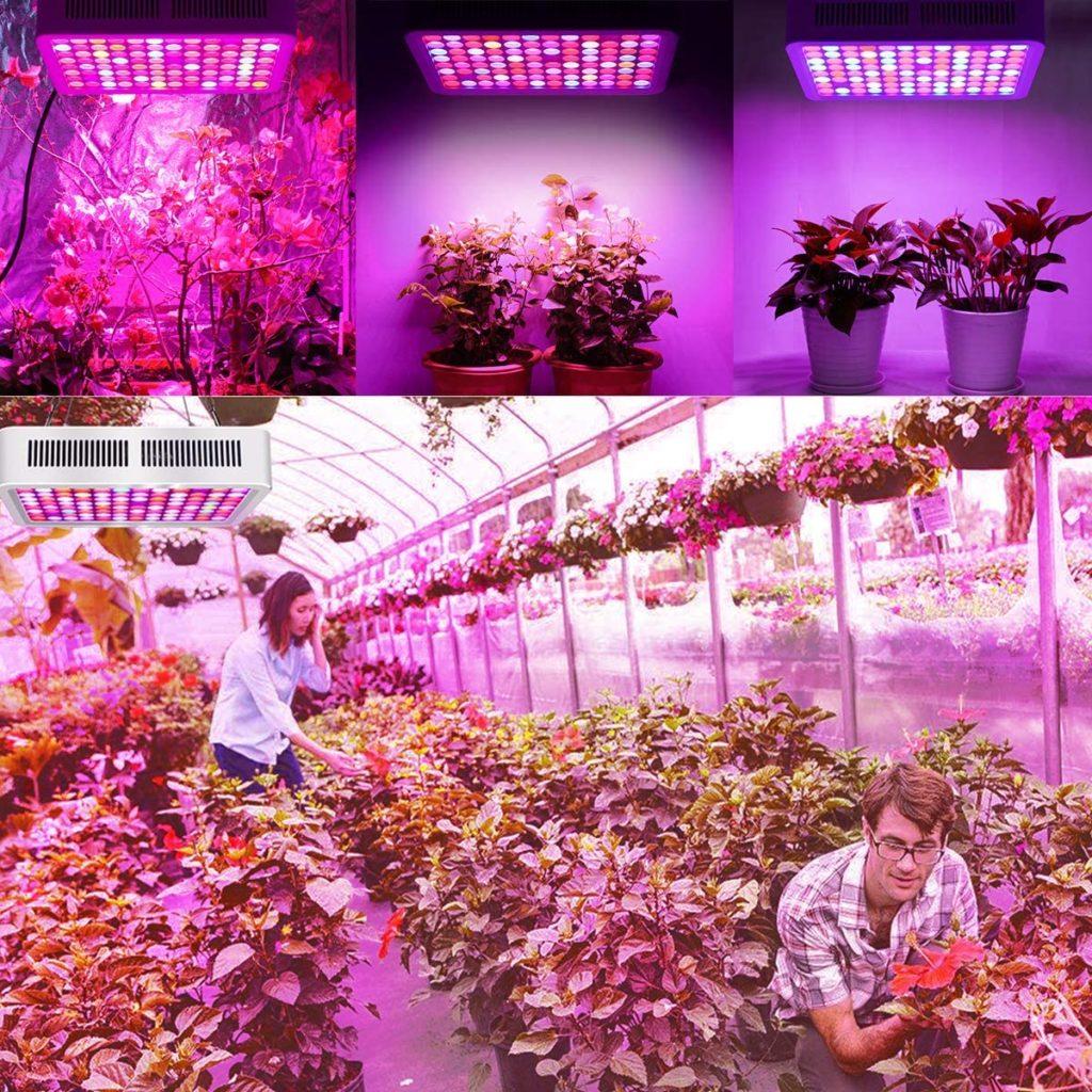 Lampe RD-600 pour Plante Roleadro Lampe Horticole Croissance Floraison Full Spectrum Led Grow Light avec variateur VEG:BLOOM