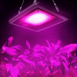 Relassy Lampe de Plantes COB LED Lampe horticole 50 W à Spectre Complet IP67 General