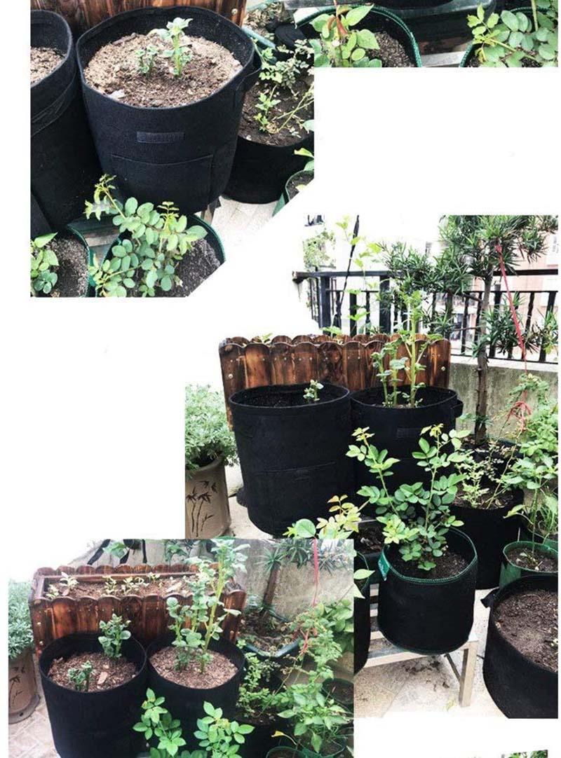 Test monroebaby Lot de 3 Sacs de Culture de Pommes de Terre en Tissu avec fenêtre