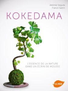 Avis - Kokedama. L'essence de la nature dans un écrin de mousse