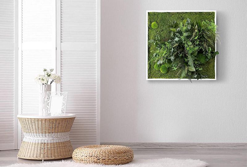 """test - L'Originale"""" Tableau de plantes avec mousse plate et plantes naturelles stabilisées"""