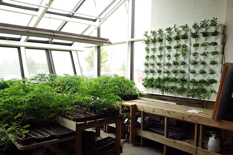 test - Minigarden Vertical Kitchen Garden pour 24 Plantes